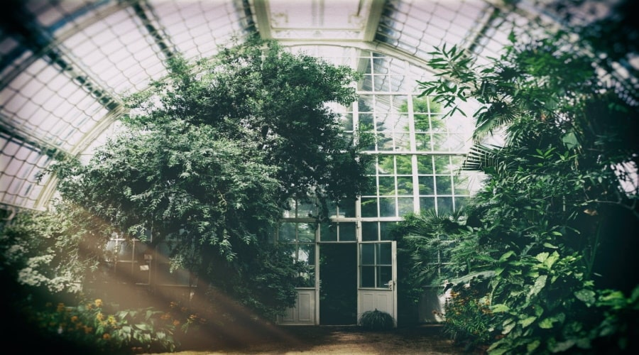 Tips to Build a Conservatory