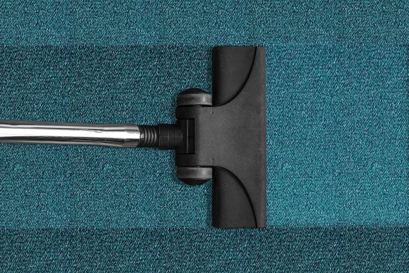 Vacuum The Carpets
