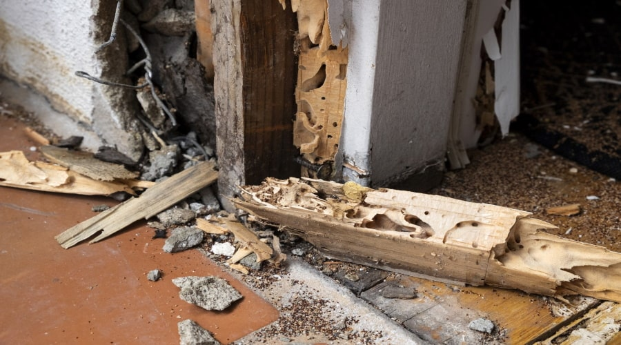 10 Ways You Could Be Causing Home Structural Issues (Without Even Knowing It)!
