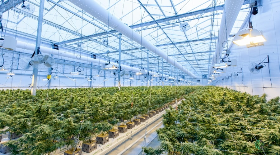 Designing Extraction Facilities – 7 Special MEP Factors to Consider