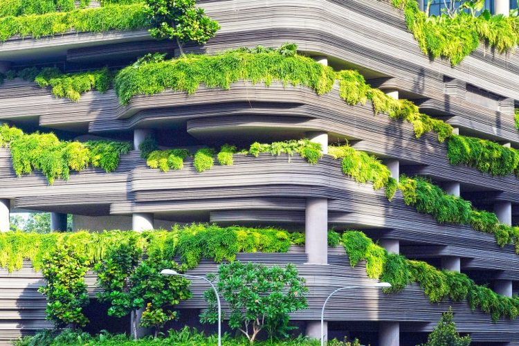 Why is it Important to Design Sustainable Houses?