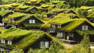Things to Consider Before Building an Eco-Home