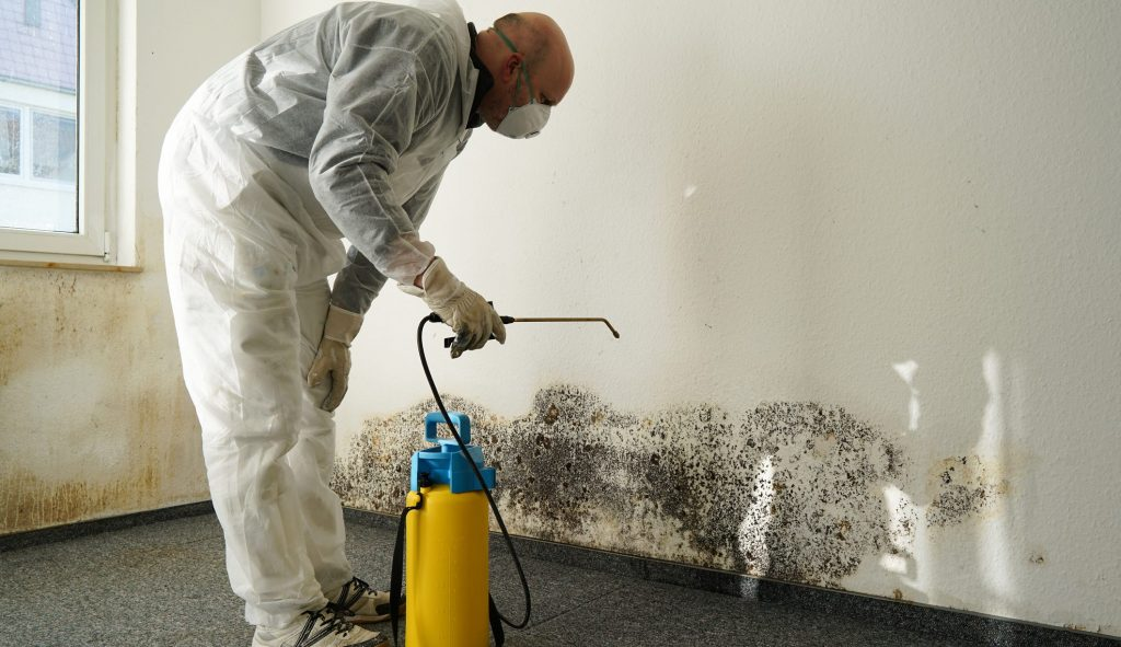 How Can Professional Water Damage Restoration Save Property Damage