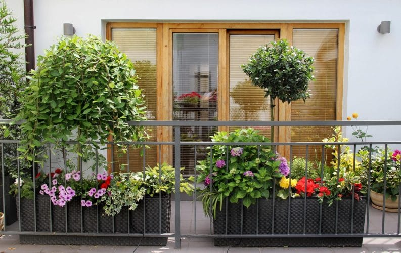 What Are Some Cozy Balcony Design Ideas??