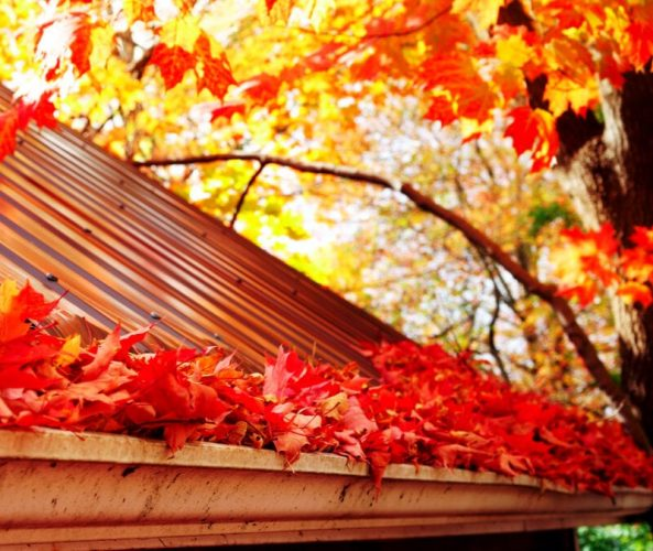 10 Tips To Prepare Your House For The Fall Season