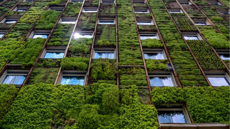 Sustainable Building Trends for Life Sciences